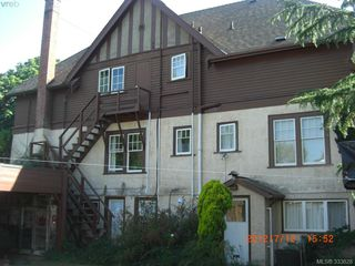 Photo 6: 3895 Hobbs St in VICTORIA: SE Cadboro Bay Multi Family for sale (Saanich East)  : MLS®# 663488