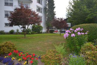 "Photo 17: 212 2890 POINT GREY Road in Vancouver: Kitsilano Condo for sale in ""KILLARNEY MANOR"" (Vancouver West)  : MLS®# R2286063"