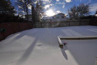 Photo 19: 4907 18 Avenue in Edmonton: Zone 29 House for sale : MLS®# E4139465