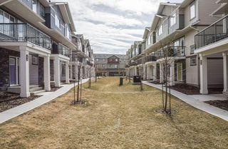 Photo 26: 85 165 CY BECKER Boulevard in Edmonton: Zone 03 Townhouse for sale : MLS®# E4150369
