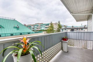 "Photo 7: 312 2055 SUFFOLK Avenue in Port Coquitlam: Glenwood PQ Condo for sale in ""Suffolk Manor"" : MLS®# R2358691"
