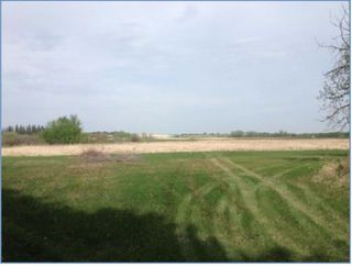 Photo 17: 53142 RGE RD 224: Rural Strathcona County Rural Land/Vacant Lot for sale : MLS®# E4154612
