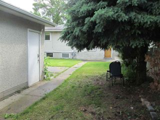 Photo 16: 8724 88 Avenue in Edmonton: Zone 18 House for sale : MLS®# E4163389