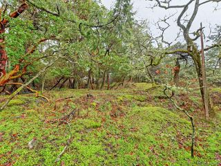 Photo 18: 3916 Benson Road in VICTORIA: SE Ten Mile Point Single Family Detached for sale (Saanich East)  : MLS®# 413262