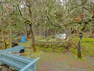 Photo 16: 3916 Benson Road in VICTORIA: SE Ten Mile Point Single Family Detached for sale (Saanich East)  : MLS®# 413262