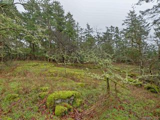 Photo 19: 3916 Benson Road in VICTORIA: SE Ten Mile Point Single Family Detached for sale (Saanich East)  : MLS®# 413262