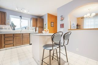Photo 13: 71 WOODCREST Avenue: St. Albert House for sale : MLS®# E4185751