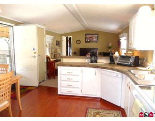 Photo 4: 15 10221 WILSON Road in Mission: Stave Falls House for sale : MLS®# F2910089
