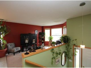 Photo 3: 184 STONEGATE Drive NW: Airdrie Residential Detached Single Family for sale : MLS®# C3621998