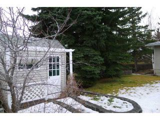 Photo 14: 2204 65 Street NE in Calgary: Pineridge Residential Detached Single Family for sale : MLS®# C3646064