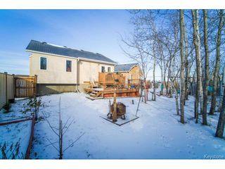 Photo 19: 10 Walter Still Cove in WINNIPEG: Transcona Residential for sale (North East Winnipeg)  : MLS®# 1503305