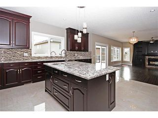 Photo 10: 140 KINNIBURGH Gardens: Chestermere House for sale : MLS®# C4028332