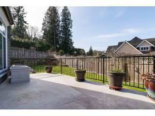 "Photo 20: 3091 162 Street in Surrey: Grandview Surrey House for sale in ""Morgan Acres"" (South Surrey White Rock)  : MLS®# R2038785"