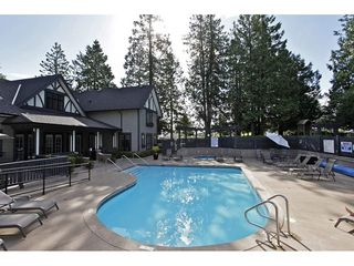 """Photo 20: 36 20875 80 Avenue in Langley: Willoughby Heights Townhouse for sale in """"PEPPERWOOD"""" : MLS®# R2106708"""