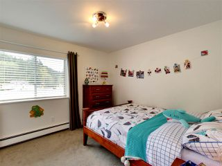 Photo 14: 510 E BRAEMAR Road in North Vancouver: Upper Lonsdale House for sale : MLS®# R2162366