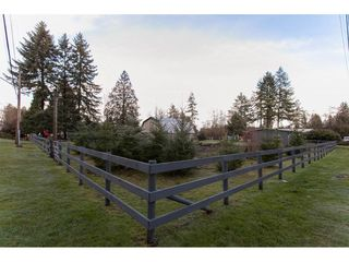 "Photo 20: 17775 97 Avenue in Surrey: Port Kells House for sale in ""Anniedale-Tynehead"" (North Surrey)  : MLS®# R2231827"
