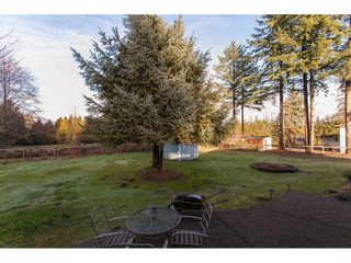 "Photo 17: 17775 97 Avenue in Surrey: Port Kells House for sale in ""Anniedale-Tynehead"" (North Surrey)  : MLS®# R2231827"