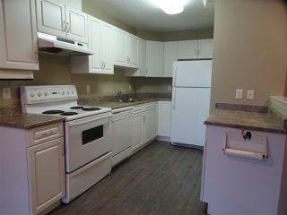 Photo 4: 123 2741 55 St Street in Edmonton: Zone 29 Condo for sale : MLS®# E4138013
