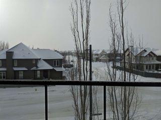 Photo 13: 337 308 AMBLESIDE Link in Edmonton: Zone 56 Condo for sale : MLS®# E4143602