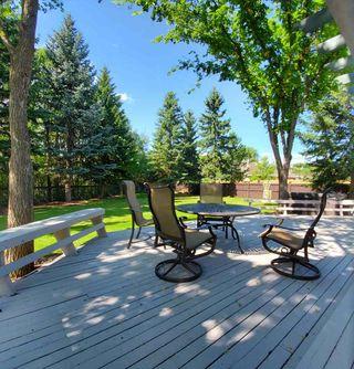Photo 29: 880 WHEELER Road W in Edmonton: Zone 22 House for sale : MLS®# E4148545