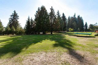 "Photo 19: 24096 52 Avenue in Langley: Salmon River House for sale in ""Salmon River"" : MLS®# R2369475"