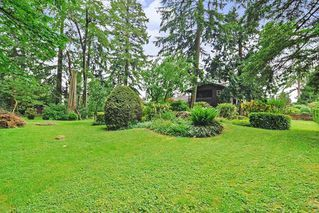 """Photo 20: 7670 229 Street in Langley: Fort Langley House for sale in """"FOREST KNOLLS"""" : MLS®# R2373639"""