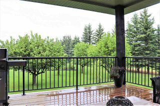 Photo 27: 160 25100 Township Road 554: Rural Sturgeon County House for sale : MLS®# E4161415