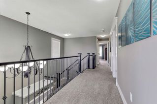 Photo 29: 52 SHERWOOD Crescent NW in Calgary: Sherwood Detached for sale : MLS®# A1009014
