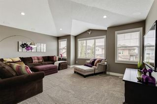 Photo 26: 52 SHERWOOD Crescent NW in Calgary: Sherwood Detached for sale : MLS®# A1009014