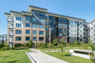 "Photo 16: 103 9388 TOMICKI Avenue in Richmond: West Cambie Condo for sale in ""ALEXANDRA COURT"" : MLS®# R2485210"