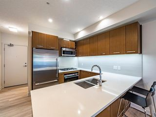 Photo 5: 219 323 20 Avenue SW in Calgary: Mission Apartment for sale : MLS®# A1031765