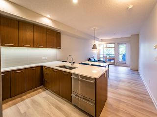 Photo 8: 219 323 20 Avenue SW in Calgary: Mission Apartment for sale : MLS®# A1031765