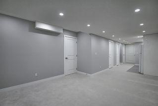 Photo 18: 3505 56 Street NE in Calgary: Temple Semi Detached for sale : MLS®# A1041375