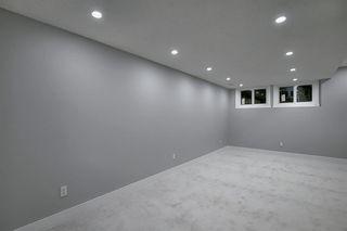 Photo 15: 3505 56 Street NE in Calgary: Temple Semi Detached for sale : MLS®# A1041375