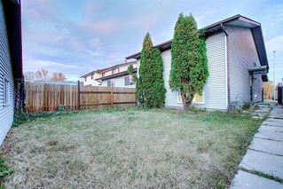 Photo 30: 3505 56 Street NE in Calgary: Temple Semi Detached for sale : MLS®# A1041375
