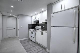 Photo 21: 3505 56 Street NE in Calgary: Temple Semi Detached for sale : MLS®# A1041375