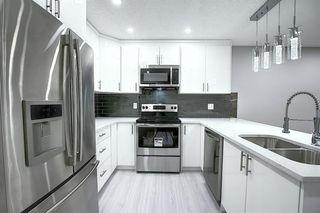 Photo 5: 3505 56 Street NE in Calgary: Temple Semi Detached for sale : MLS®# A1041375