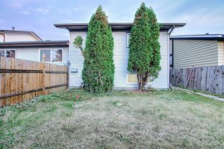 Photo 34: 3505 56 Street NE in Calgary: Temple Semi Detached for sale : MLS®# A1041375
