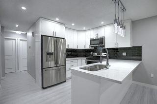 Photo 3: 3505 56 Street NE in Calgary: Temple Semi Detached for sale : MLS®# A1041375