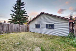 Photo 28: 3505 56 Street NE in Calgary: Temple Semi Detached for sale : MLS®# A1041375
