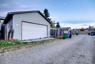 Photo 24: 3505 56 Street NE in Calgary: Temple Semi Detached for sale : MLS®# A1041375