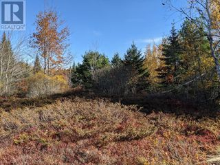 Photo 2: Lots Samuel Mader Road in New Canada: Vacant Land for sale : MLS®# 202100319