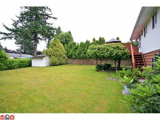 Photo 10: 11008 148A Street in Surrey: Bolivar Heights House for sale (North Surrey)  : MLS®# F1118402