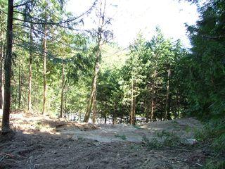 Photo 5: Lot 2 Port Mellon Highway in Langdale: Land for sale (Sunshine Coast)  : MLS®# V589419