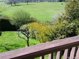 Photo 8: 4090 Holland Ave in VICTORIA: SW Strawberry Vale House for sale (Saanich West)  : MLS®# 699469