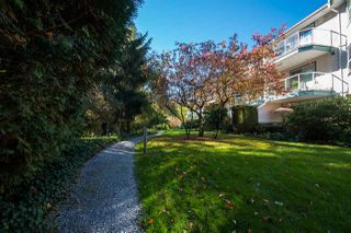 Photo 15: 312 27358 32 Avenue in Langley: Aldergrove Langley Condo for sale : MLS®# R2115816