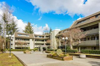 """Main Photo: 405 1210 PACIFIC Street in Coquitlam: North Coquitlam Condo for sale in """"GLENVIEW MANOR"""" : MLS®# R2143971"""