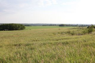 Photo 3: Highway 36 Twp Rd 560: Rural Two Hills County Rural Land/Vacant Lot for sale : MLS®# E4099407