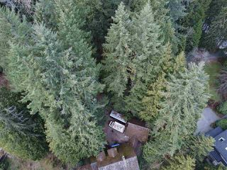 "Photo 10: 1486 COAST MERIDIAN Road in Coquitlam: Burke Mountain House for sale in ""BURKE MOUNTAIN"" : MLS®# R2260058"