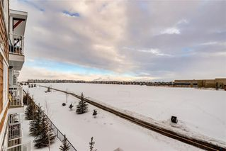 Photo 20: 7312 302 SKYVIEW RANCH Drive NE in Calgary: Skyview Ranch Apartment for sale : MLS®# C4186747